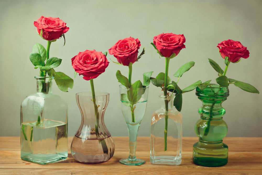 Uncategorized Archives - Roses and Smiles